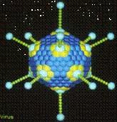 Капсида вируса с икосаэдрической симметрией