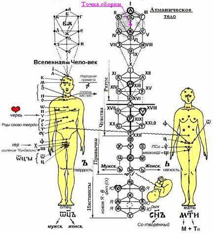 Различные представления Рунической концепции человека в Славянских традициях.