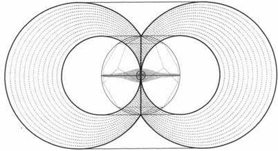 Тороэдальное поле, порождаемое точкой сборки